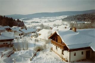Fewo mit malerischem Bergblick im Bayerischen Wald Bischofsmais