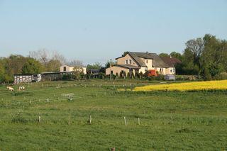 Ferienhof mit Kleintieren in Zweedorf F 40
