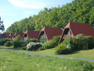 Finn-Ferienhäuser Am Vogelpark F 971
