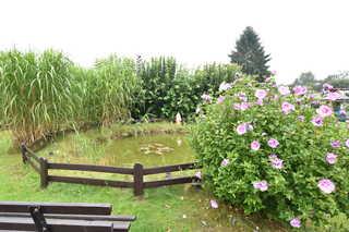 Bungalow Gartenteich Reddelich F 19