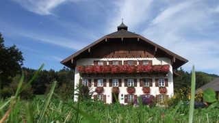 Bauernhof Hinterstrasser Tiefgraben am Mondsee