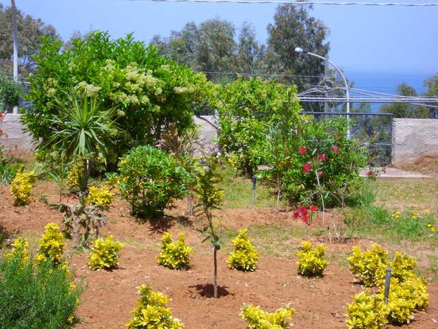 Holiday house Casale Mare - Ferienhaus Casale Mare mitten im Golf von Castellammare (2294917), Balestrate, Palermo, Sicily, Italy, picture 10