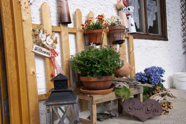 Ferienwohnung Haus Waldesruh - Apartment
