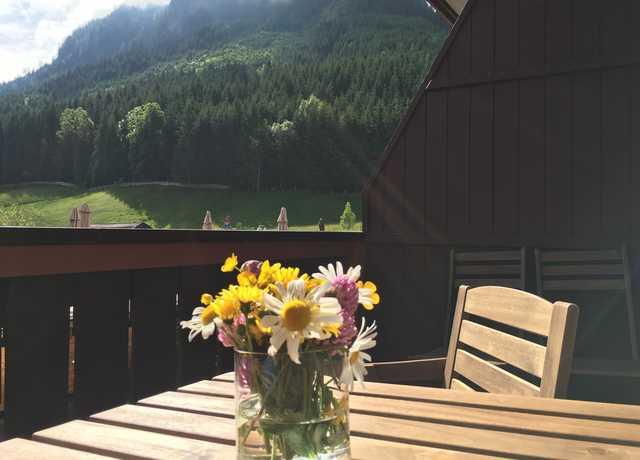 Ferienwohnung Ferienwohnungen Kogelblick Gosau - Ferienwohnung A mit Balkon (2345094), Gosau, Salzkammergut, Oberösterreich, Österreich, Bild 7